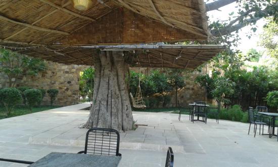 Mana Hotels Ranakpur Rest