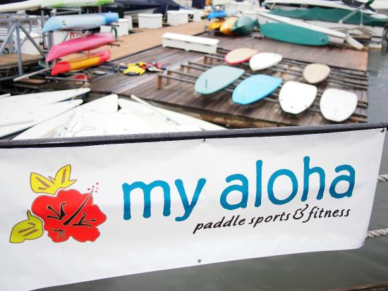 My Aloha Paddle and Surf