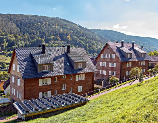 Bad Wildbad Hotels Umgebung