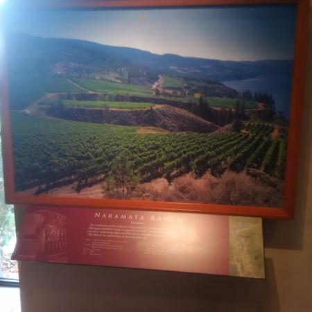 West Kelowna, Canada: Stories about the valley's grapes