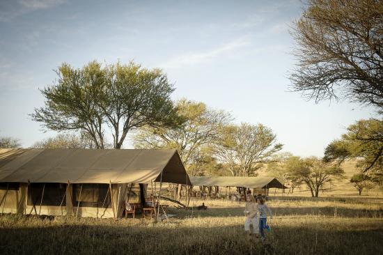 Serengeti Safari Camp, Nomad Tanzania: Brand new tents now at Serengeti Safari Camp.