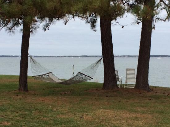 McDaniel, MD: The hammocks are endless!