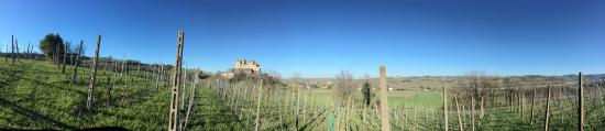 Cantina del Borgo