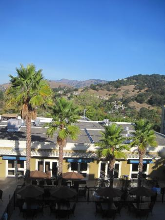 Four Points by Sheraton San Rafael: Palm Trees and Hills