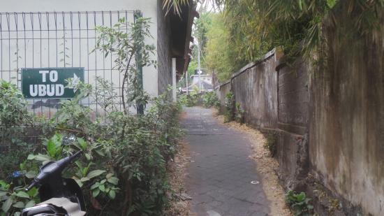 Le chemin pour aller à Ubud