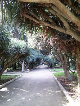 Kasbah of Algiers: حديقة التجارب الجزائر