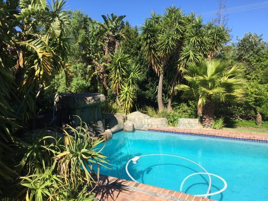 Guesthouse Summerlight: Blick auf den Pool.