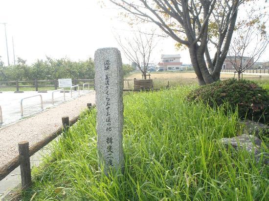 Ibi Nido Zakura Cherry Blossom