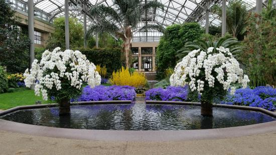 Longwood Gardens: Inside The Conservatory In March
