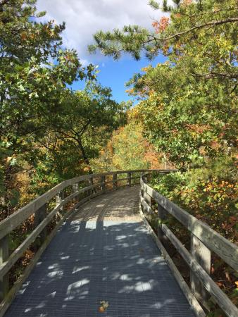 Massanutten Storybook Trail: Trail to the overlook