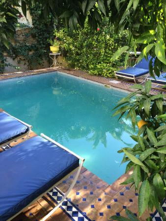 Riad Jean Claude: Pool