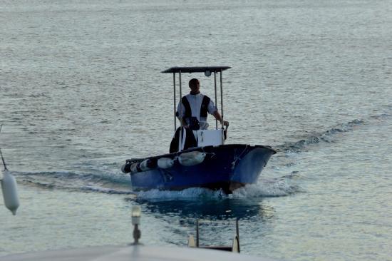 Istria, Croacia: Hier kommt frischer Fisch!