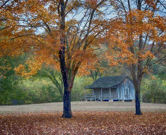 Van Buren, MO: The old cabin