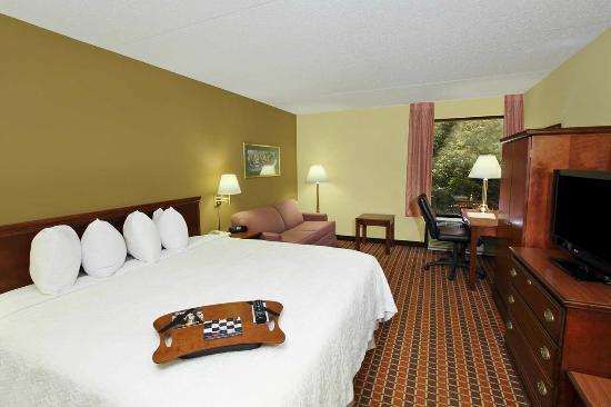 Hampton Inn Philadelphia/Great Valley/Malvern: King Bed with Sofa Bed