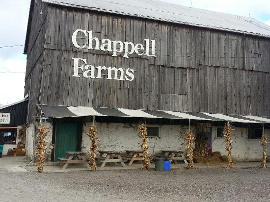 Image result for corn maze chappell farms