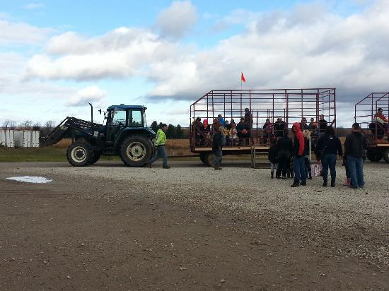 Barrie, Canadá: Chappell Farms