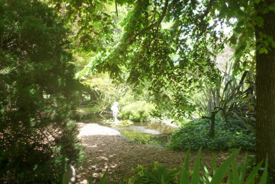 Running Stream, Australië: Pond and garden setting