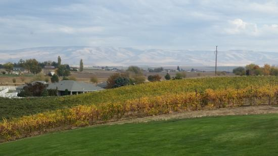 Hampton Inn & Suites Walla Walla: View from Northstar Winery, 10 minutes from hotel