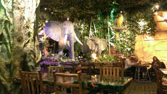 Is There A Rainforest Cafe In New York