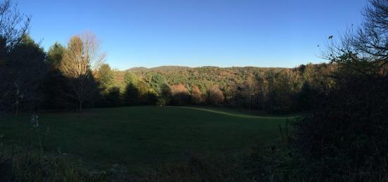 Willis, VA: View