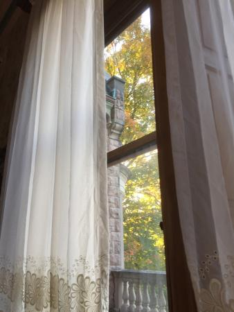 Stirling Guest Hotel: Full windows with so much light