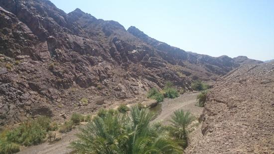 Wadi Al Qahfi