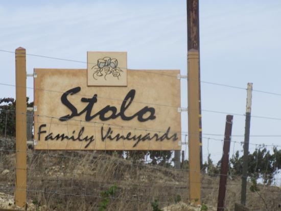 Stolo Family Winery & Vineyards, Cambria, Ca