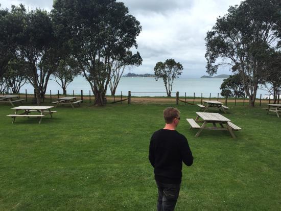 Pulau Waiheke, Selandia Baru: photo0.jpg