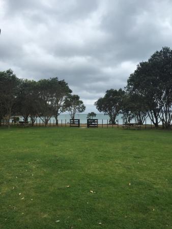 Waiheke Island, Neuseeland: photo5.jpg