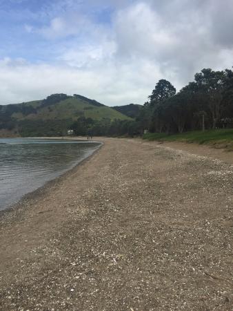 Waiheke Island, Neuseeland: photo6.jpg