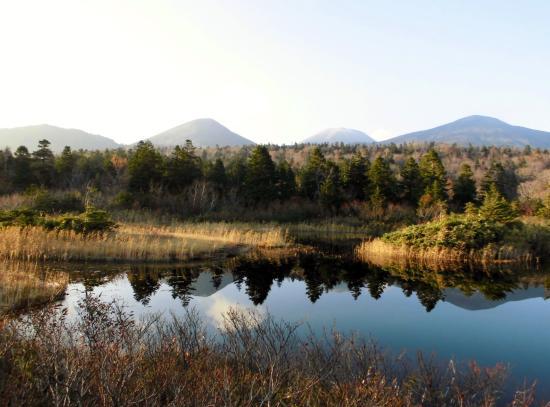 Suiren Pond: 睡蓮沼と八甲田連峰