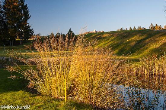 Smlednik, Slovenië: Autumn on the golf course 4