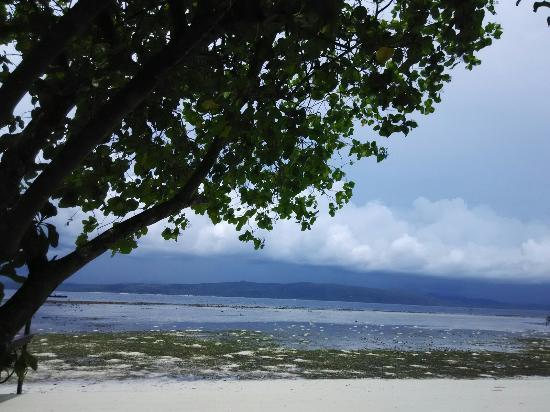Mansuar Island, อินโดนีเซีย: IMG_20151027_115728_large.jpg