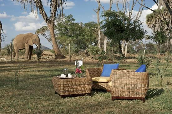 Elephant Bedroom Camp Updated 2017 Campground Reviews Price Comparison Kenya Samburu