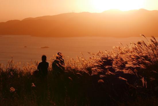 Onidake Volcanic Mountain: 夕陽が落ちていきます。ススキの穂が幽玄さを際立たせます
