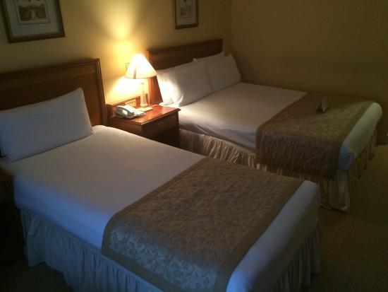 Grafton Capital Hotel: photo2.jpg