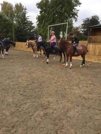 South Petherton, UK: Vaux Park Polo Club