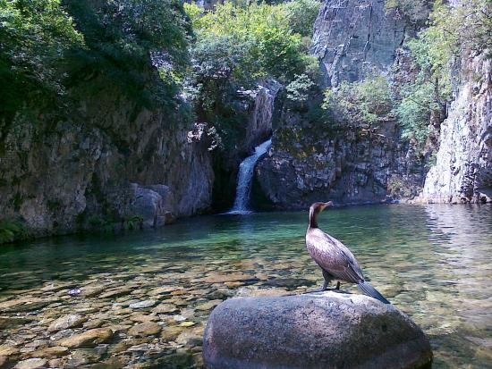 Πρώτη βάθρα - Picture of Fonias Gorge, Samothraki ...