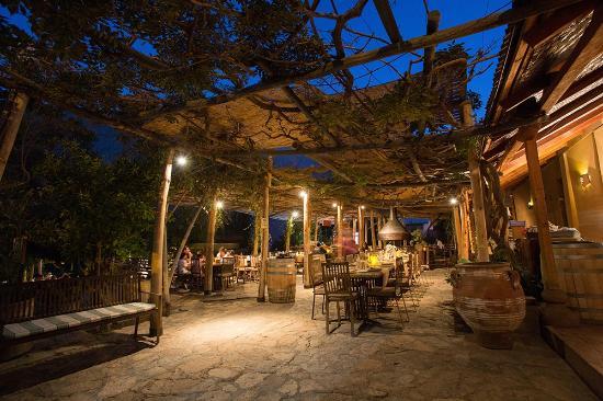 Restaurant Destileria Pisco Mistral