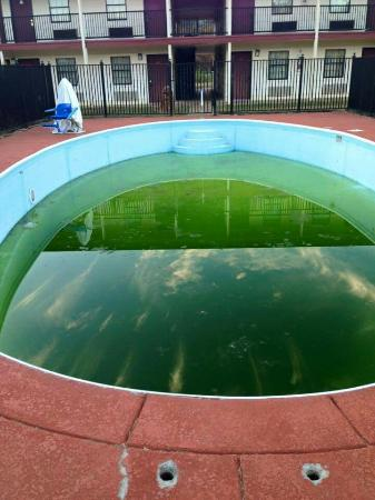 Budget Inn & Suites Talladega : Here's the actual pool from 10/24/2015. Glad i packed my swim trunks!