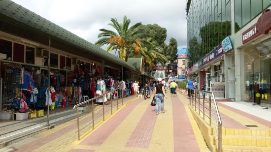 Adler Market