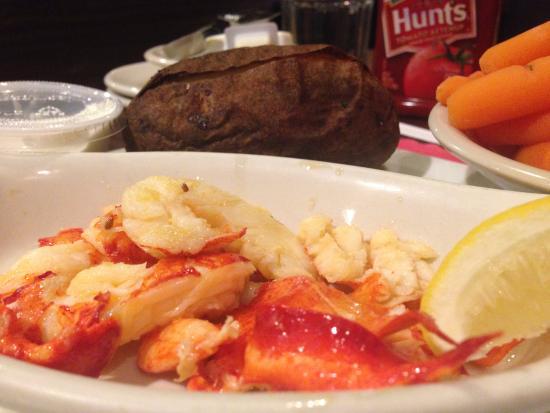 Ellsworth, ME: Polpa di Lobster (Aragosta)