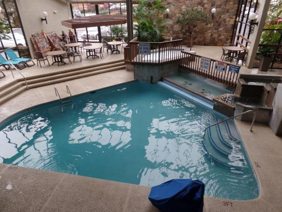 BEST WESTERN Toni Inn: indoor pool and hot tub
