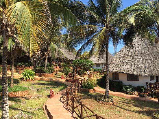 Ras Nungwi Beach Hotel : Hotel Grounds