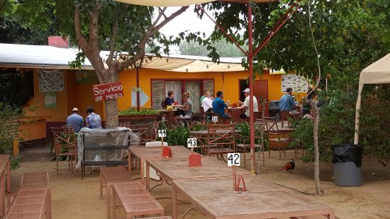 La Casa de Dona Lupe: Plenty of patio seating areas