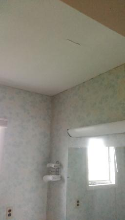 Four Seasons Motel: Hole in the bathroom ceiling area, and mold in the crevices of the wall and ceiling