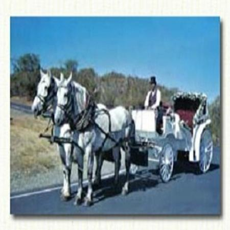 Top Hand Ranch Carriage Company Sacramento 2020 All You Need To Know Before You Go With Photos Tripadvisor