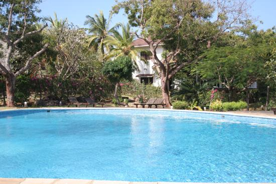 B b con piscina bild fr n simba house malindi tripadvisor - B b con piscina ...