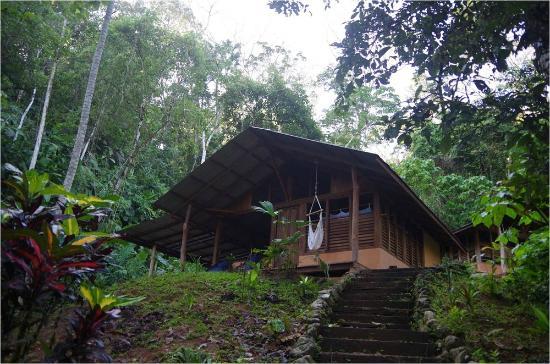 Osa Rainforest Rentals: Casa Zenon, Dos Brazos de Rio Tigre