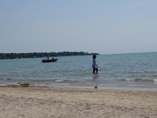 Dunnville, Canadá: Beach at James Allan Provincial Park